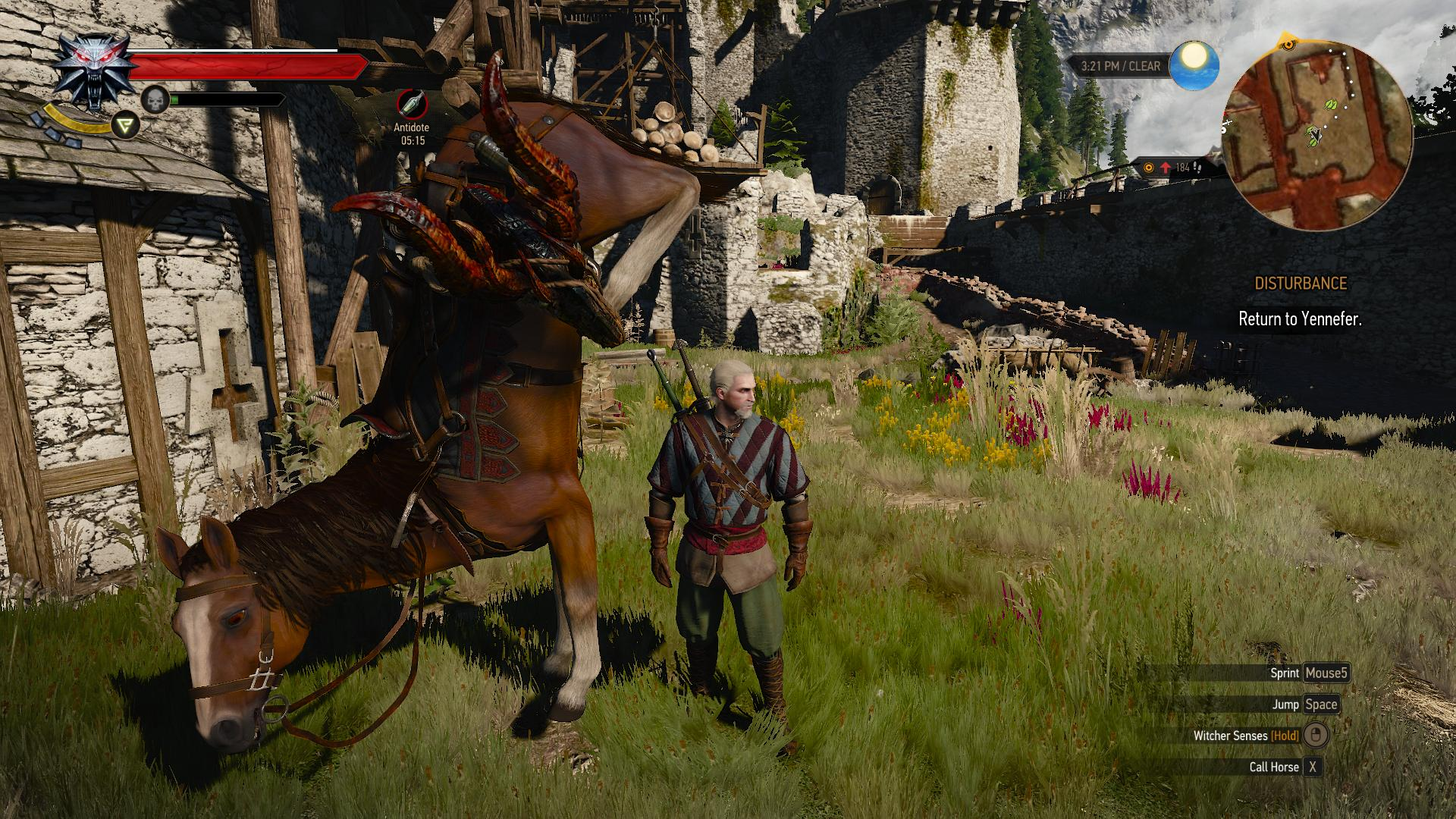 the-witcher-3-roach